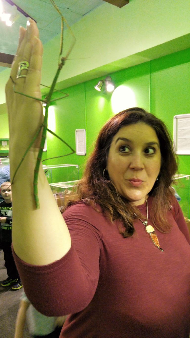 Janine with the giant walkingstick.